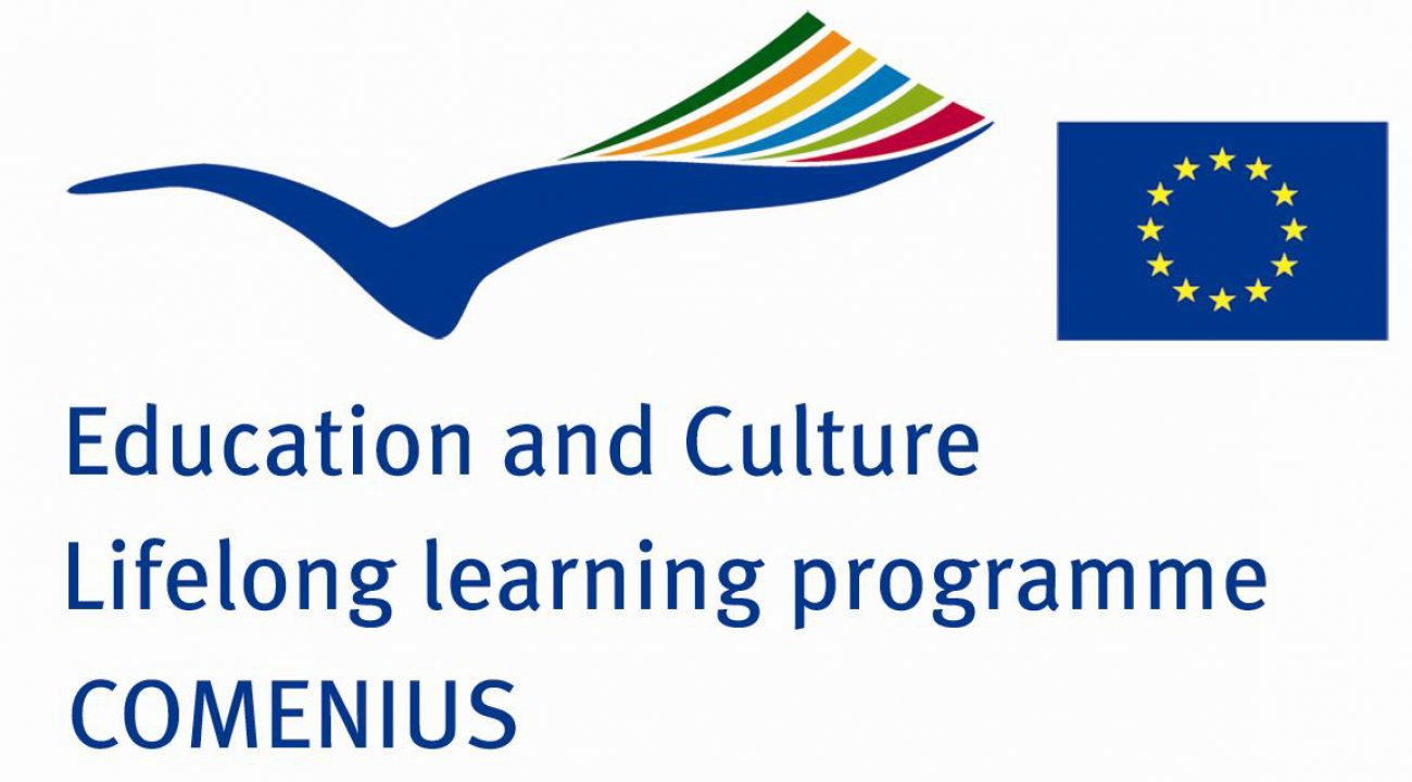 Das Comenius-Projekt am Holbein: Owning the Future!